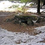 studánka - druhé prameniště Basénku