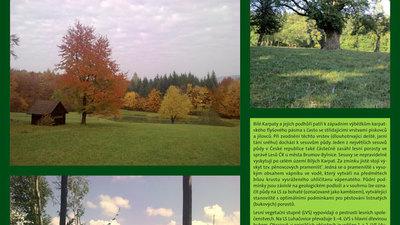 Bojkovice – Světlov