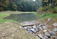 Lesy ČR: Borušovský potok už zase oživuje krajinu