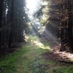 DK_Karlovarsky_kraj_02