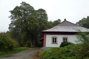 drazdanske-lesy-301.jpg