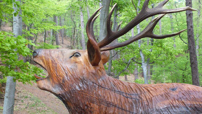 Lesnická naučná stezka Okolo Buchlova