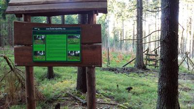 Lesnická naučná stezka Dyleň