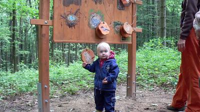Hravé putování ještědským lesem