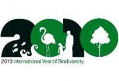 Lesy ČR aktivně podporují význam Mezinárodního roku biodiverzity