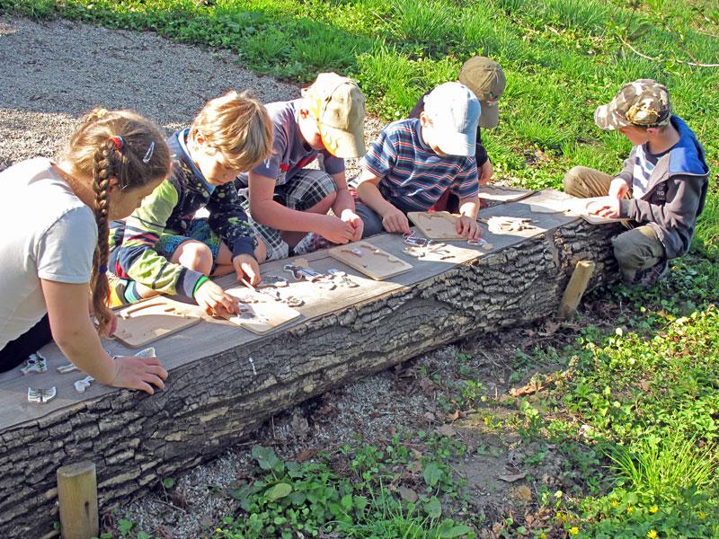 Lesni Pedagogika V Roce 2013 Na Lesni Sprave Jablunkov Lesy Ceske