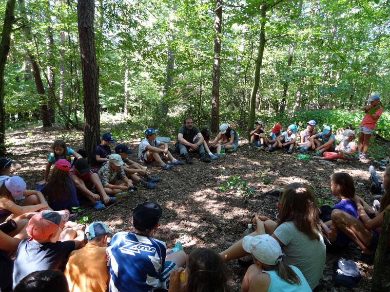 Lesni Pedagogika O Prazdninach Lesy Ceske Republiky S P