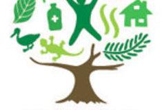 Lesy ČR se aktivně připojily kMezinárodnímu roku lesů 2011