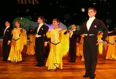 14. reprezentační lesnický ples