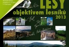 Lesy KŘ Šumperk objektivem lesníků 2013