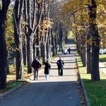 prochazka-lazenskym-parkem-800