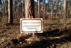 VBořím lese na Břeclavsku začal pyrotechnický průzkum