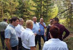 Rumunští lesníci navštívili své české kolegy