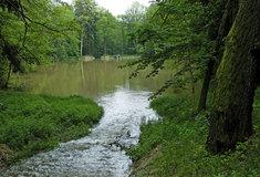 Voda, tůně arybníky