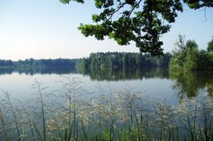 trebonske-rybniky-301.jpg