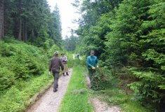 Sezónní zaměstnanci Lesů ČR likvidují černé skládky