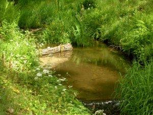 Račí potok – budováním zápletových výhonů se vytváří vhodné podmínky pro život mihulí