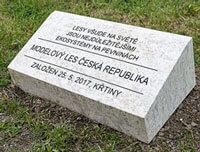Založen Modelový les Česká republika
