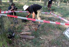 Na Břeclavsku pyrotechnici dál prohledávají Boří les