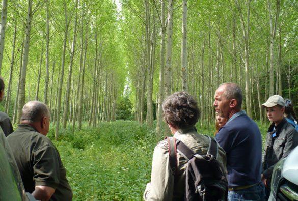 Exkurze z Kostromské lesnicko-mechanizační školy na Lesní správě Znojmo