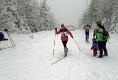 23. ročník lyžařských soutěží lesníků ČR, Jeseníky, Kouty nad Desnou