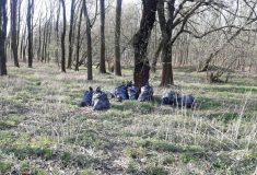 Pracovníci veřejně prospěšných prací uklízeli kolem řeky Moravy