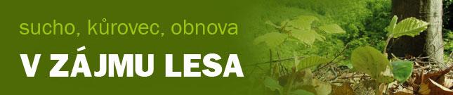 banner-v-zajmu-lesa