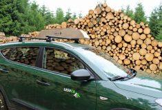 Lesy ČR testují Dralle, systém měření dříví