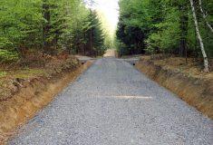 Rekonstrukce lesní cesty K Lavečce