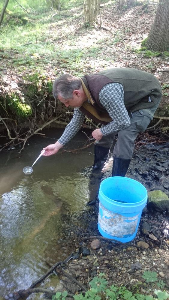 vypouštění plůdku pstruha do Račího potoka v Libereckém kraji