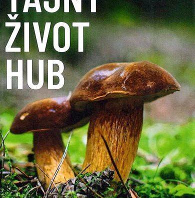 Nové publikace vtechnické knihovně Ředitelství LČR