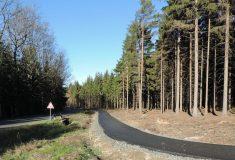 V Libereckém kraji právě Lesy ČR dokončily pěší stezku a cyklotrasu