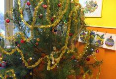 Vánoční borovice a smrky opět daruje dětským sociálním a zdravotnickým zařízením podnik Lesy České republiky
