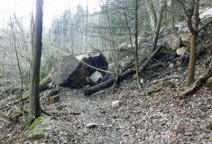 Českolipsko: Naučná stezka v národní přírodní rezervaci Peklo je dočasně neprůchodná