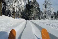 V Jizerských horách končí strojová úprava běžkařské trasy Jizerka-Promenádní