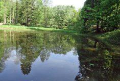 Vodní nádrž a dvě tůně obnovily Lesy ČR uLetohradu