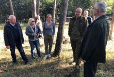 Poslanci ze Zemědělského výboru po roce znovu posoudili stav lesů