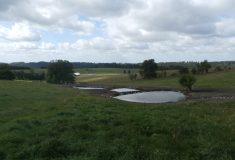 Čtyři potoky na východě Čech se vrací do přírodních koryt