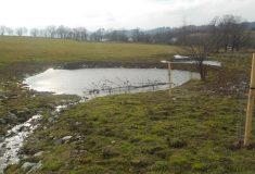 Revitalizace Souvlastní a Debrného potoka