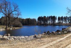 Lesy ČR dělají opatření proti suchu: Opravily na Vysočině dvě vodní nádrže a vybudovaly tři tůně