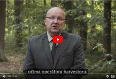Vojáček: Dnem za obnovu lesa jsme založili novou lesnickou tradici