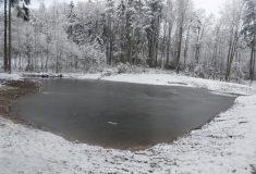 Program pokračuje: Lesy ČR obnovily v Pardubickém kraji dva historické rybníky a vyhloubily mokřad s tůní