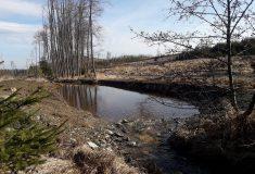 Pět nových tůní prospěje lesům na Bruntálsku