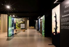 Poznejte novou expozici Lesů ČR v Národním zemědělském muzeu v Praze