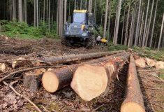 Lesy ČR odeslaly prvních čtyři sta tisíc korun lidem postiženým tornádem Kamiony naplněné dřevem na nové krovy dorazí na pily tento pátek