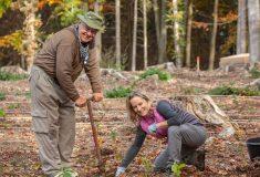 Vsobotu proběhne další Den za obnovu lesa  V jeden den na třinácti místech vzemi